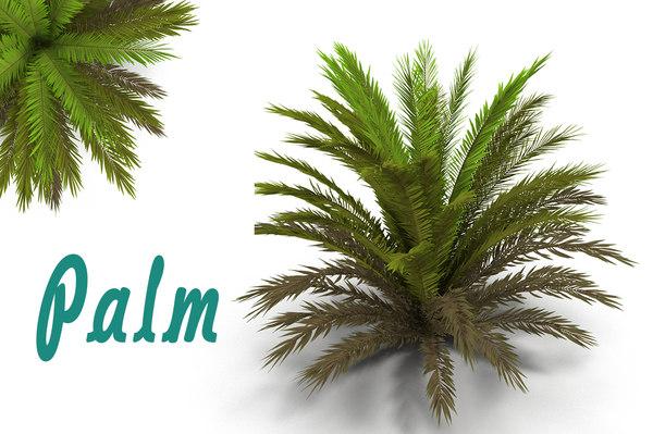 3d max palm