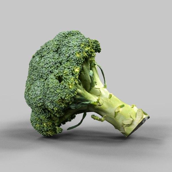 3d model photorealistic broccoli