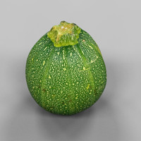 3d model photorealistic cucurbita pepo