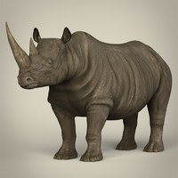3d model realistic rhinoceros