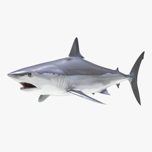 shortfin mako shark 3d 3ds