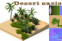 3d desert oasis model