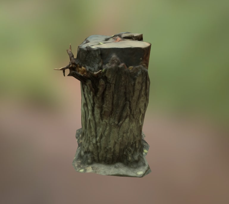 photogrammetry stump 3d 3ds