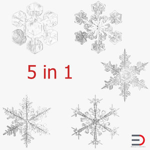 3d model snowflakes set realistic