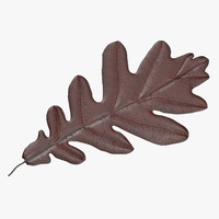brown oak leaf 3d model