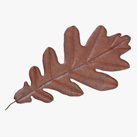 3d model orange oak leaf