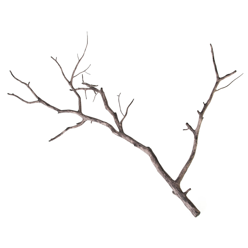 branch decoration 3d model