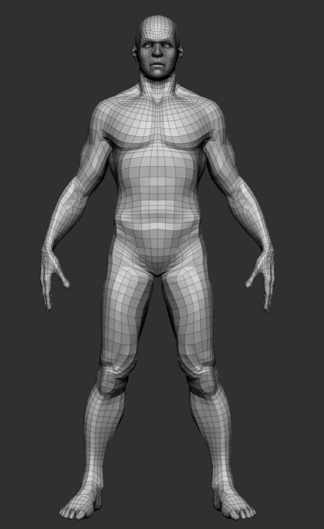 3d male basemesh model