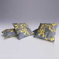Contemporary Cushion 03