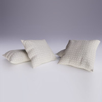 Contemporary Cushion 05