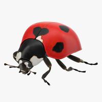 ladybug poses c4d