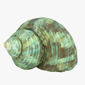 seashell sea shell obj