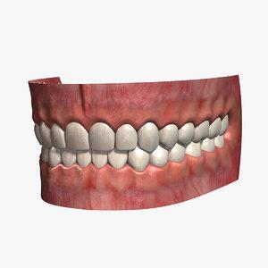 3ds human teeth 2