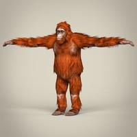 Low Poly Realistic Orangutan