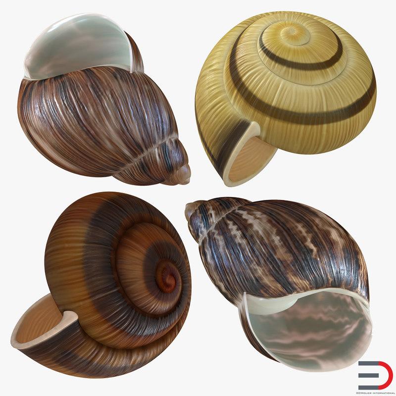 snail shells 3d 3ds