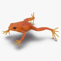 3d mantella frog