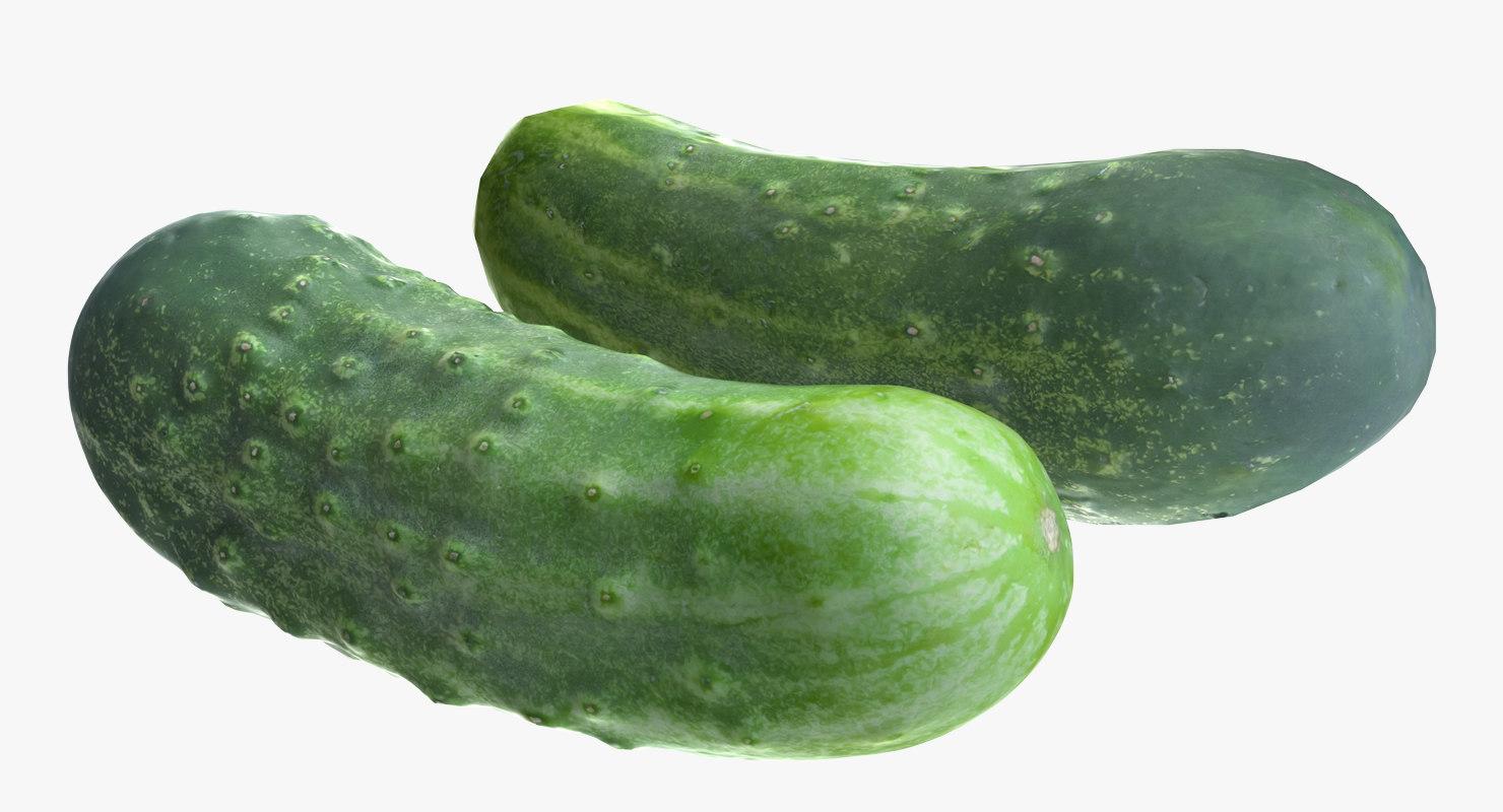 cucumber polys 3d model