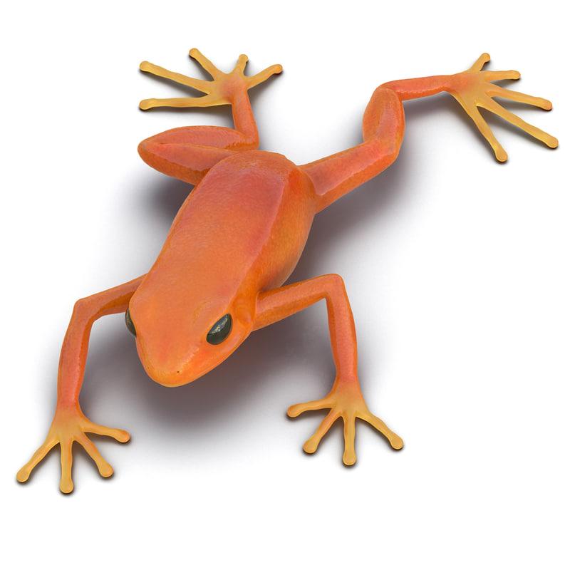 mantella frog pose 3 3d model