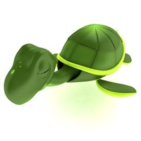 Cute Turtle Tortoise model