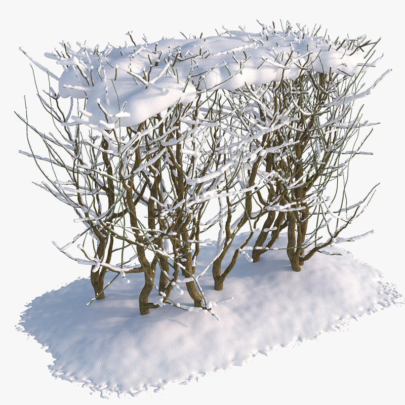 set snow bushes 1 3d max