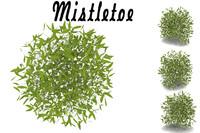3d model mistletoe
