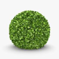 3d realistic hedge 01