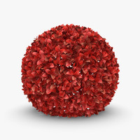 3d model realistic hedge 01 red
