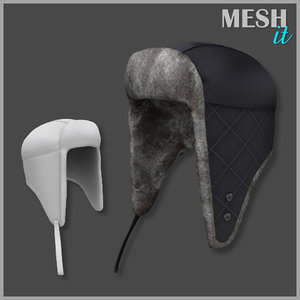 3d hat winter model