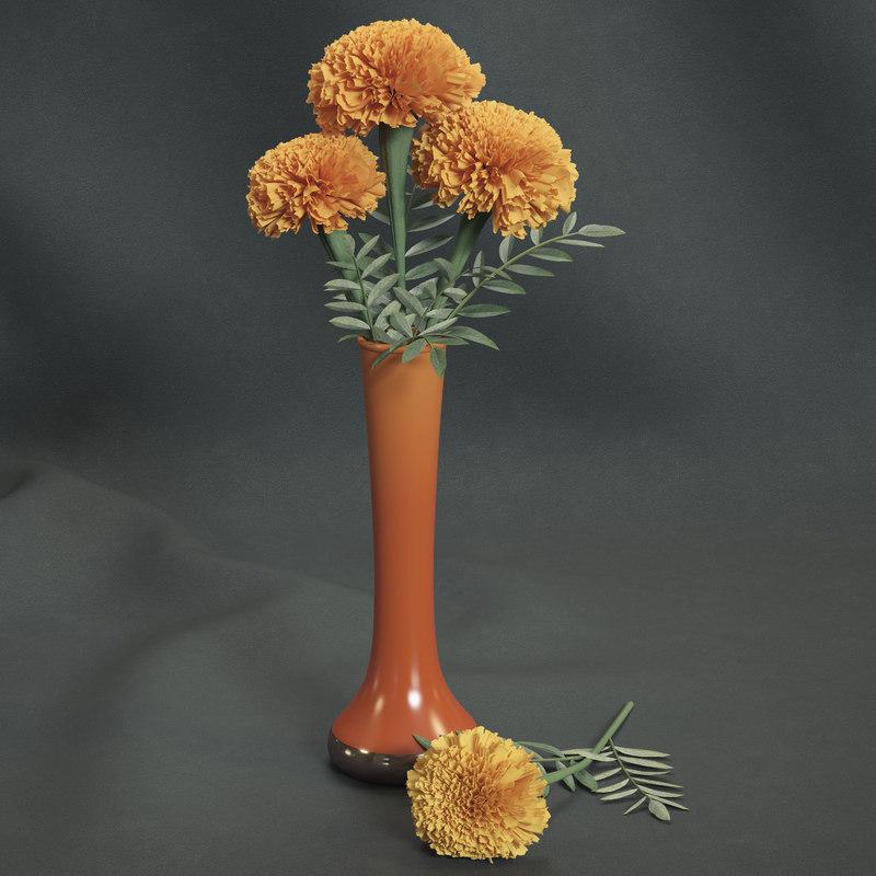 max marigolds