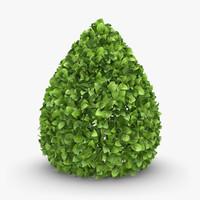 3d model realistic hedge 03