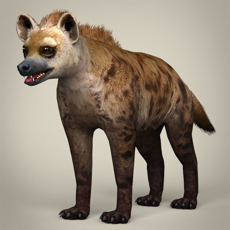3ds realistic hyena