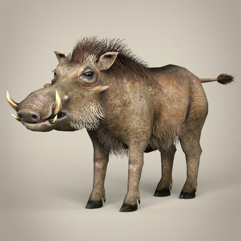 realistic warthog 3d model