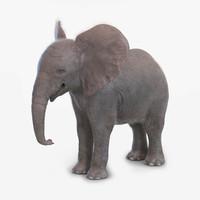 baby elephant fur max