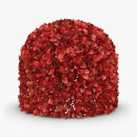 3d model hedge 04 red