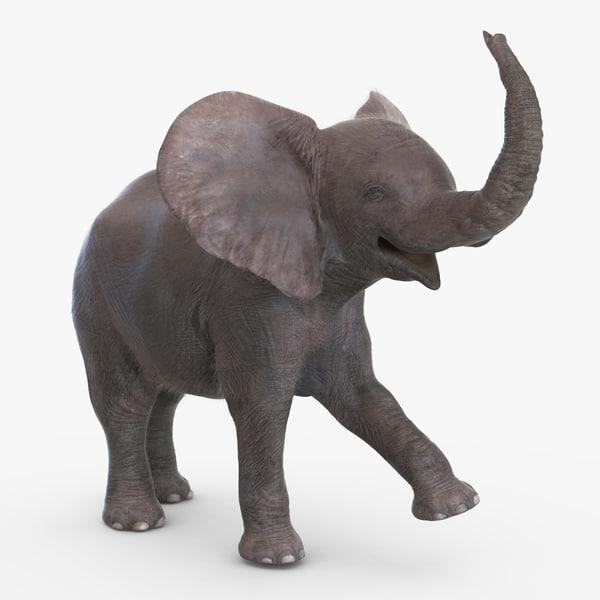 baby elephant rigged fur x