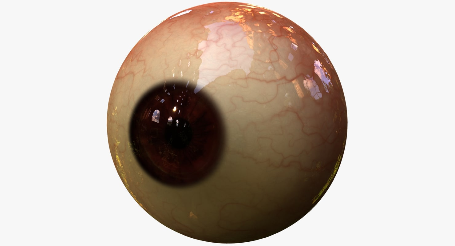 3d realistic human eye pupil model