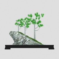 free bonsai tree 3d model