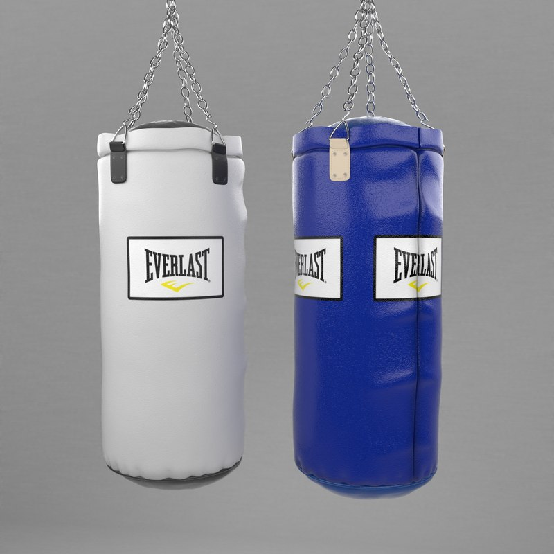 3d model of punching bags