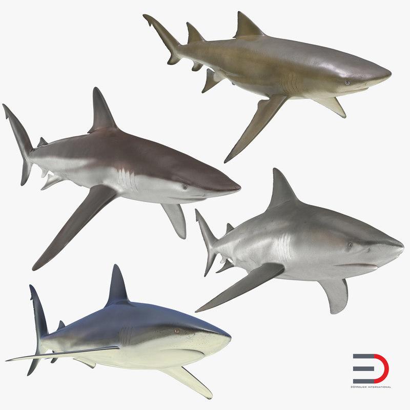sharks 5 3ds