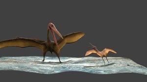 3d model fighting pterosaur