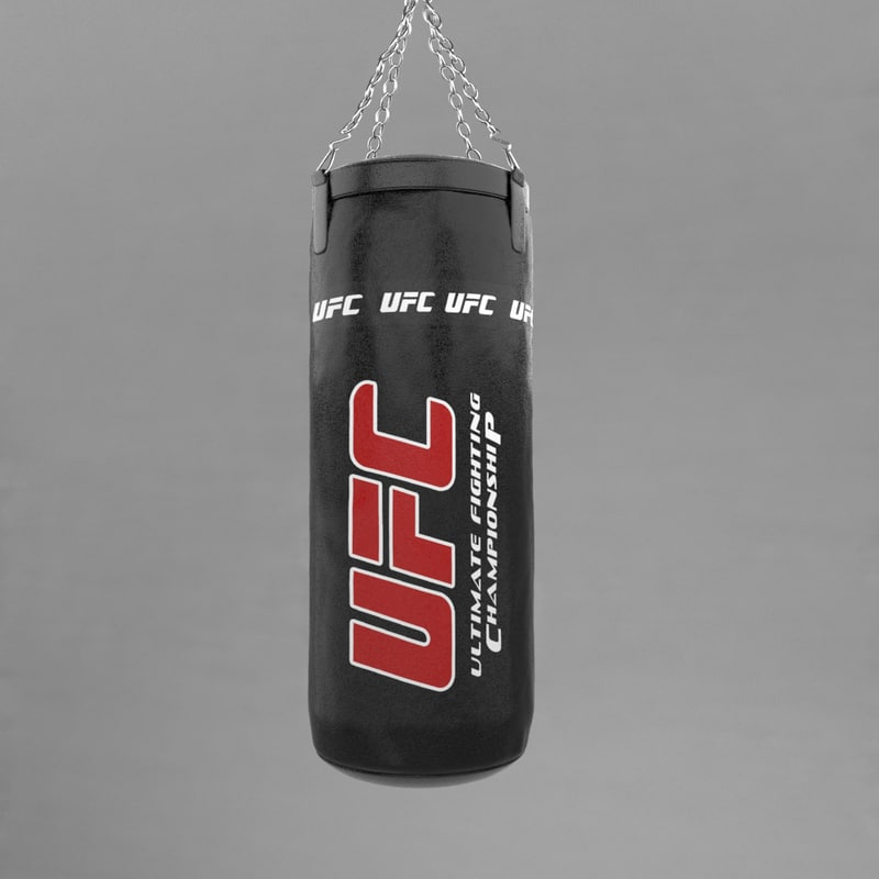 3d model punching bag v3