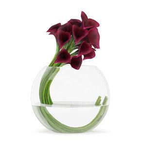 dark red calla lilies 3d c4d