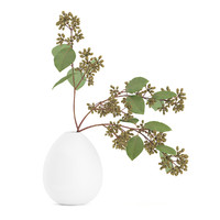 Sugar Gum Twigs in White Vase