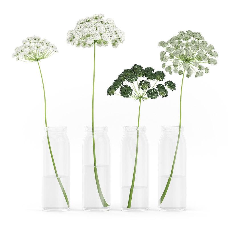 wild carrot flowers glass jars 3d model