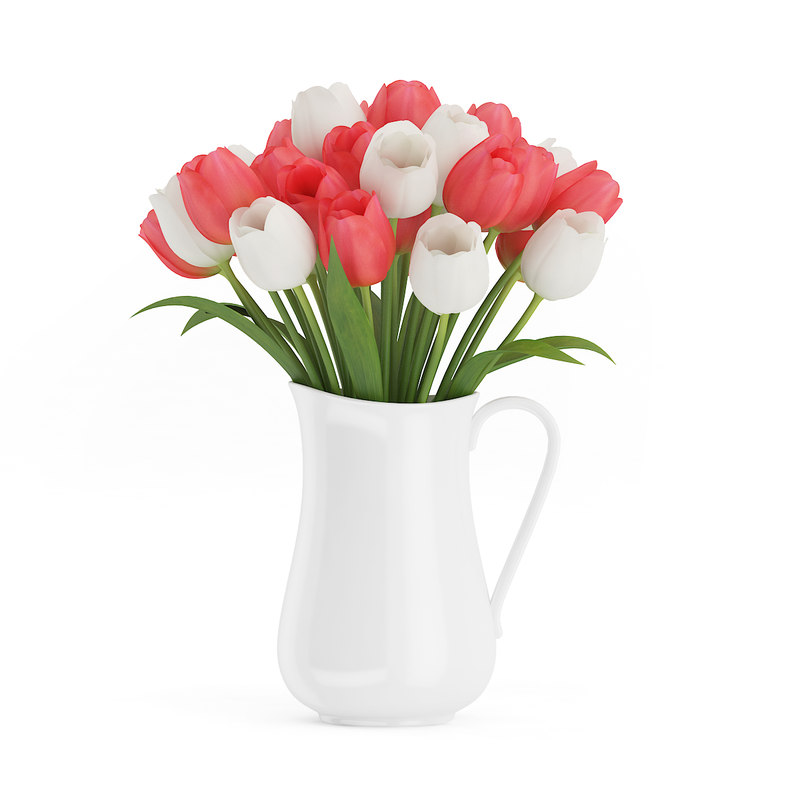 bouquet red white tulips 3d model