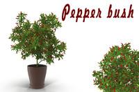 max bush pepper