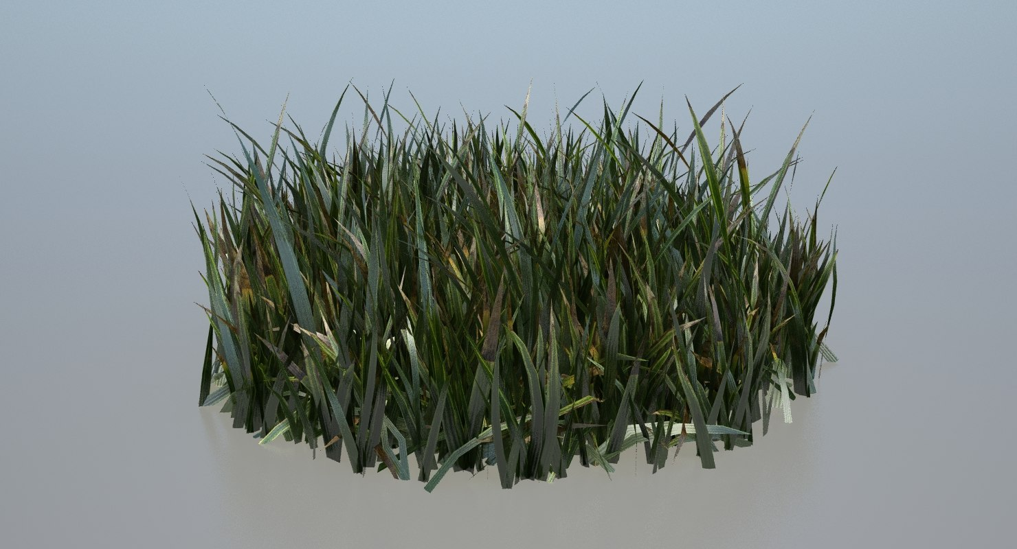 ground grass 3d ma