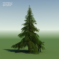 3d model conifer cedrus tree