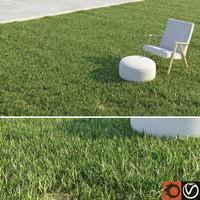 grass lawn 3d model
