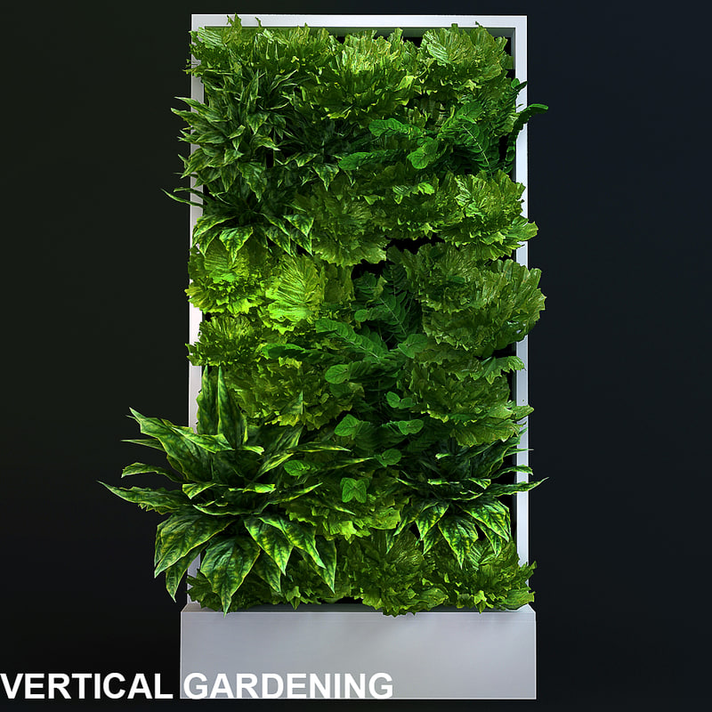 vertical plants max